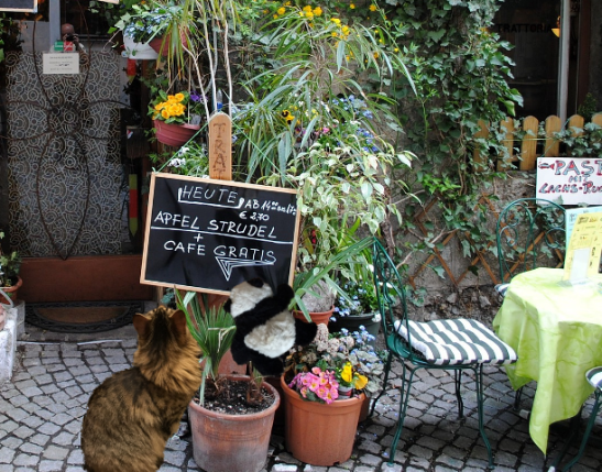 cafe gratis small