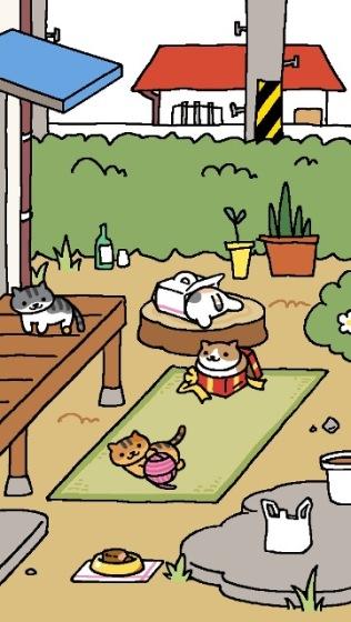 cat yard 2