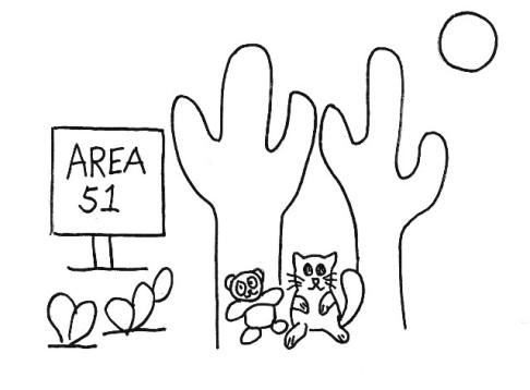 practice area 51