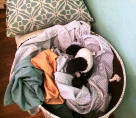 panda in laundry