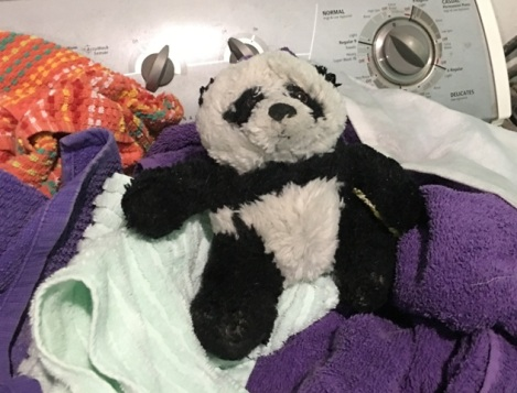 panda on towels