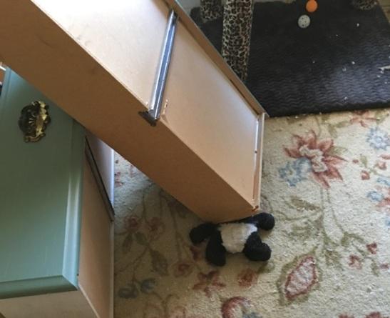 panda under drawer