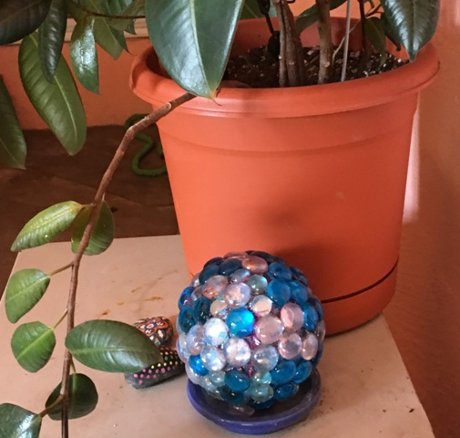 blue sphere by plant