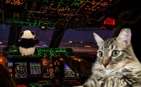 both in cockpit cropped
