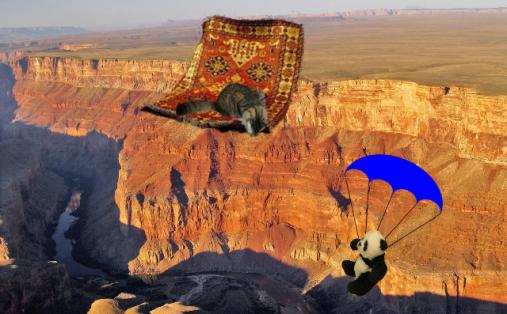 panda parachuting review