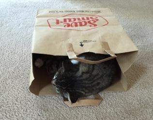 save maart bag
