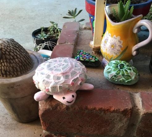 shabby turtle