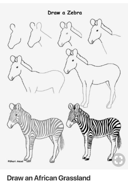 zebra directions