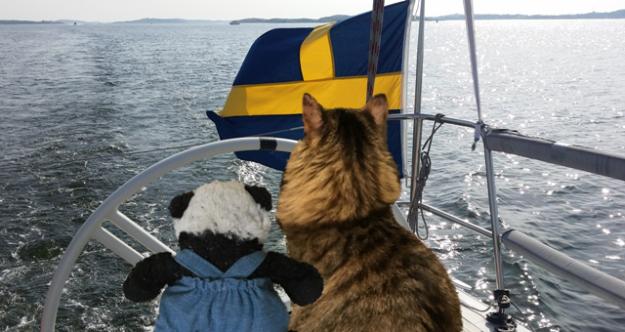 in boat sm