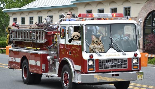 a both in firetruck