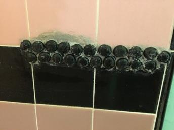black gems in shower