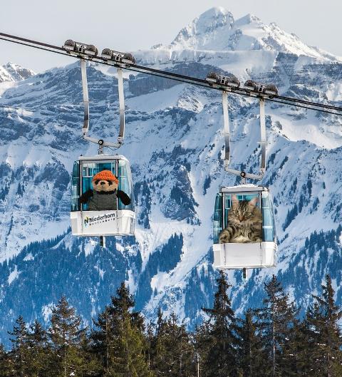 a in ski lift