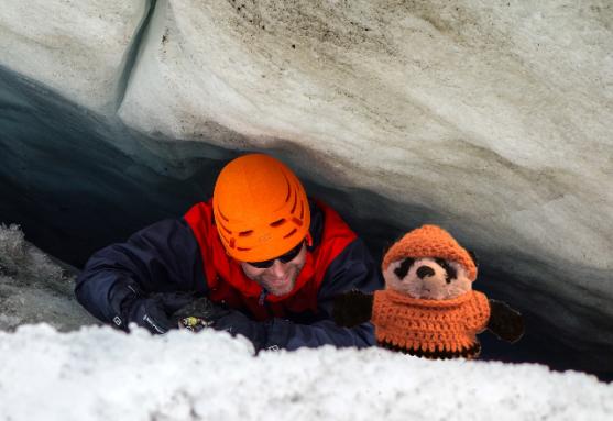 a panda in crevasse