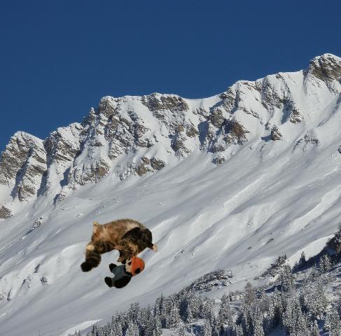 a sliding on snow