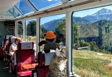 on train